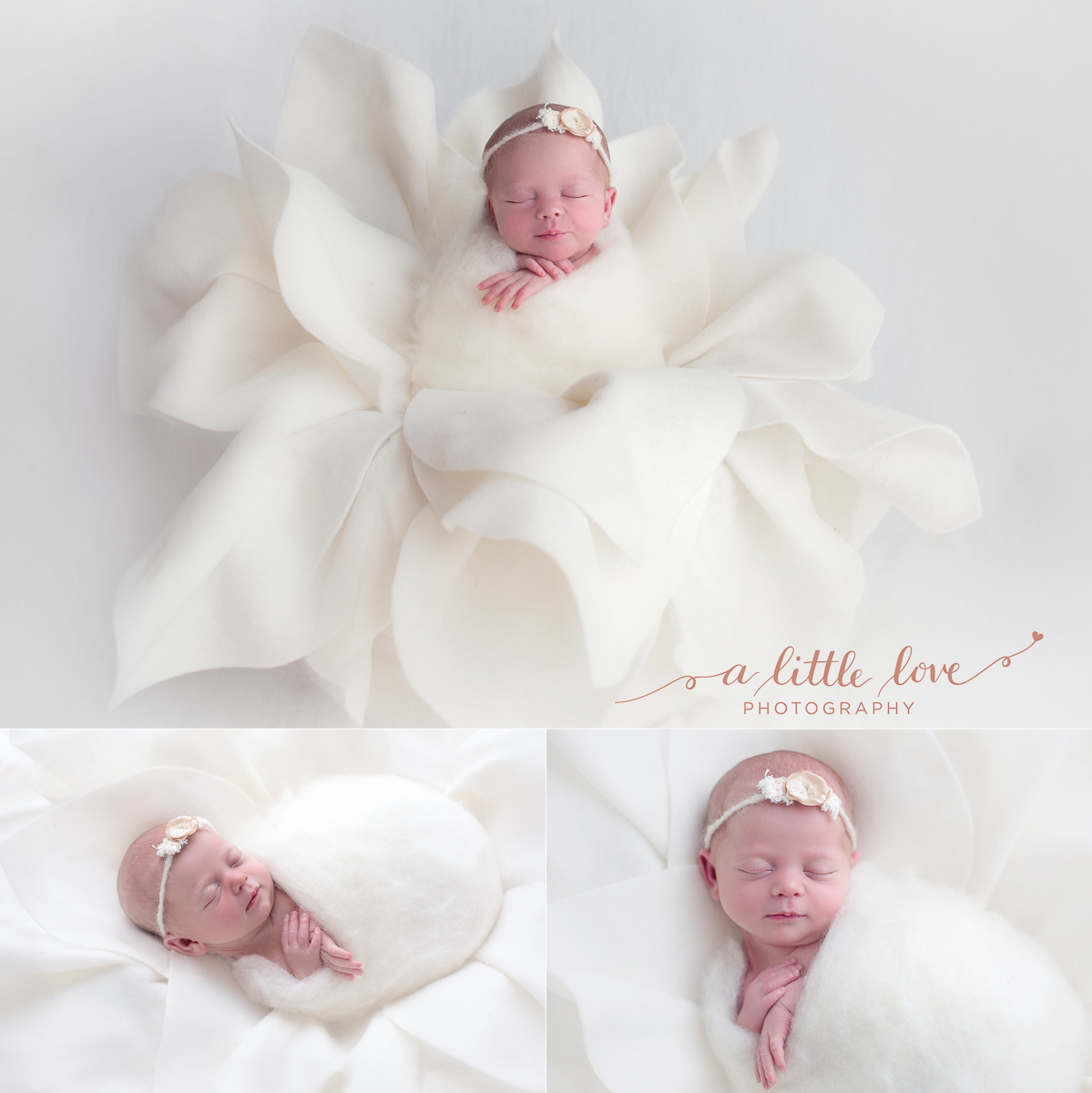 Ballarat Newborn Photographer