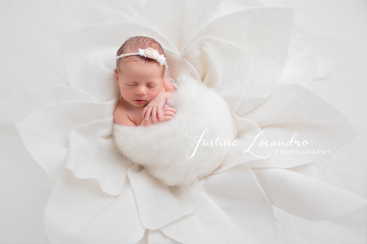 Justine Locandro Photography
