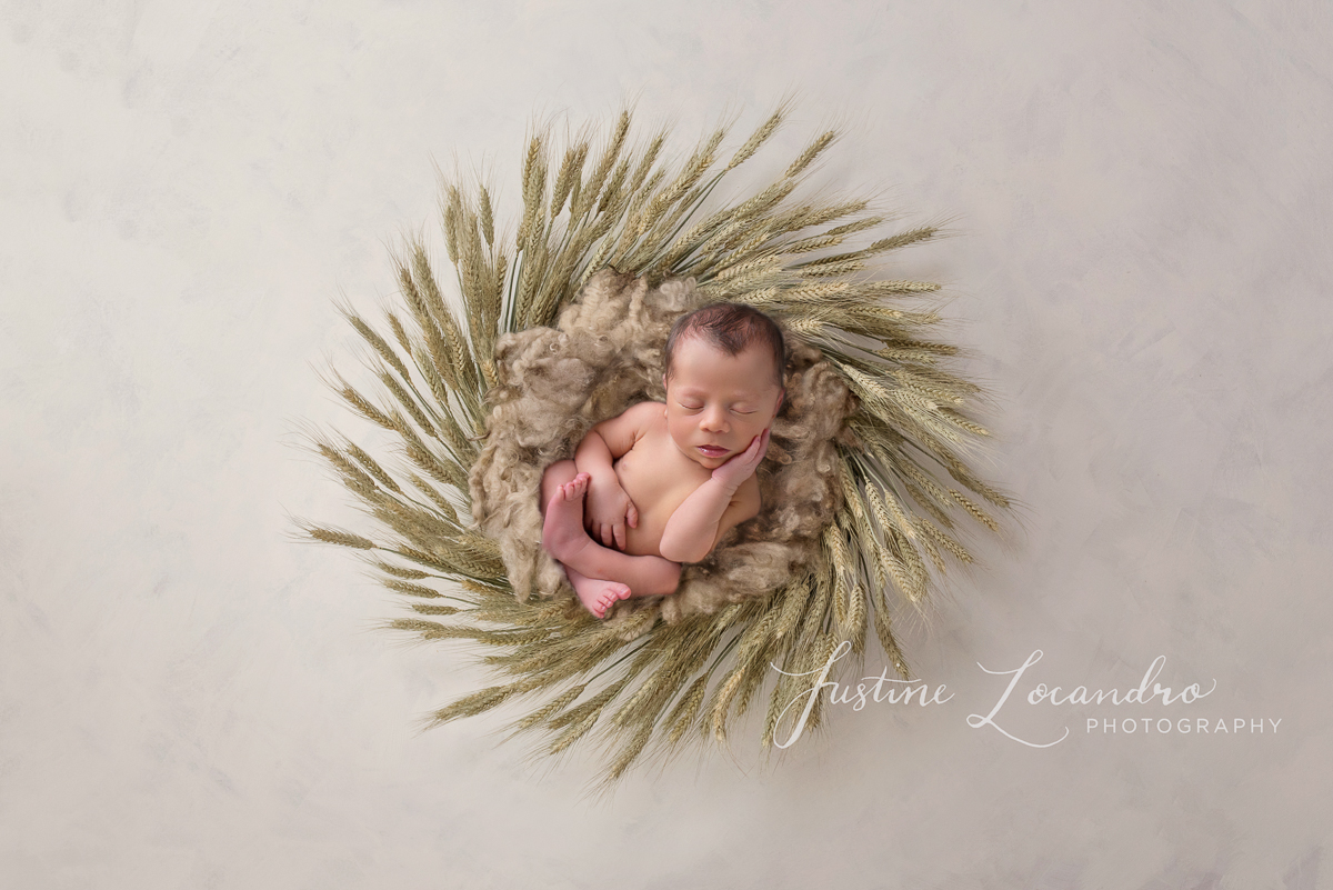 Photograph of newborn baby boy in wheat basket