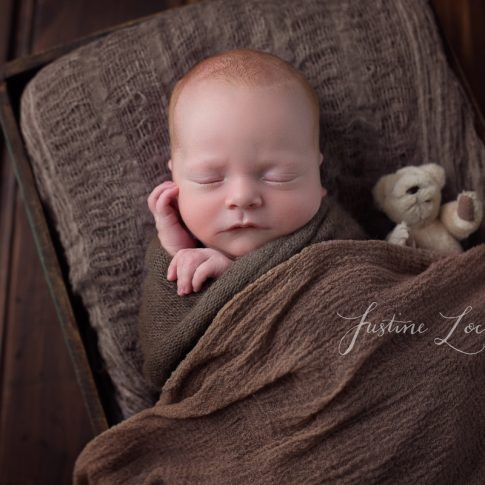photograph of Ballarat newborn baby in browns with teddy bear taken by Ballarat newborn photographer Justine Locandro Photography