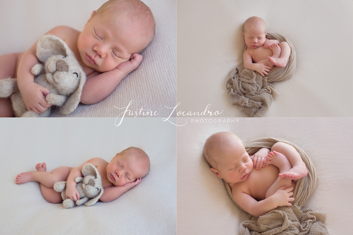Ballarat newborn photographer baby boy in neutrals and browns