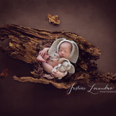 Ballarat newborn photographer baby boy on a log taken by Ballarat newborn photographer Justine Locandro Photography