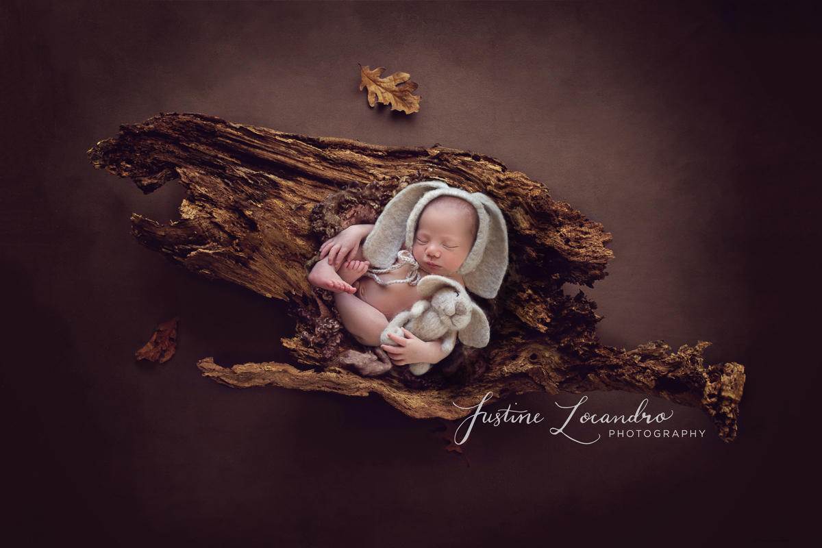 Ballarat newborn photographer baby boy on a log