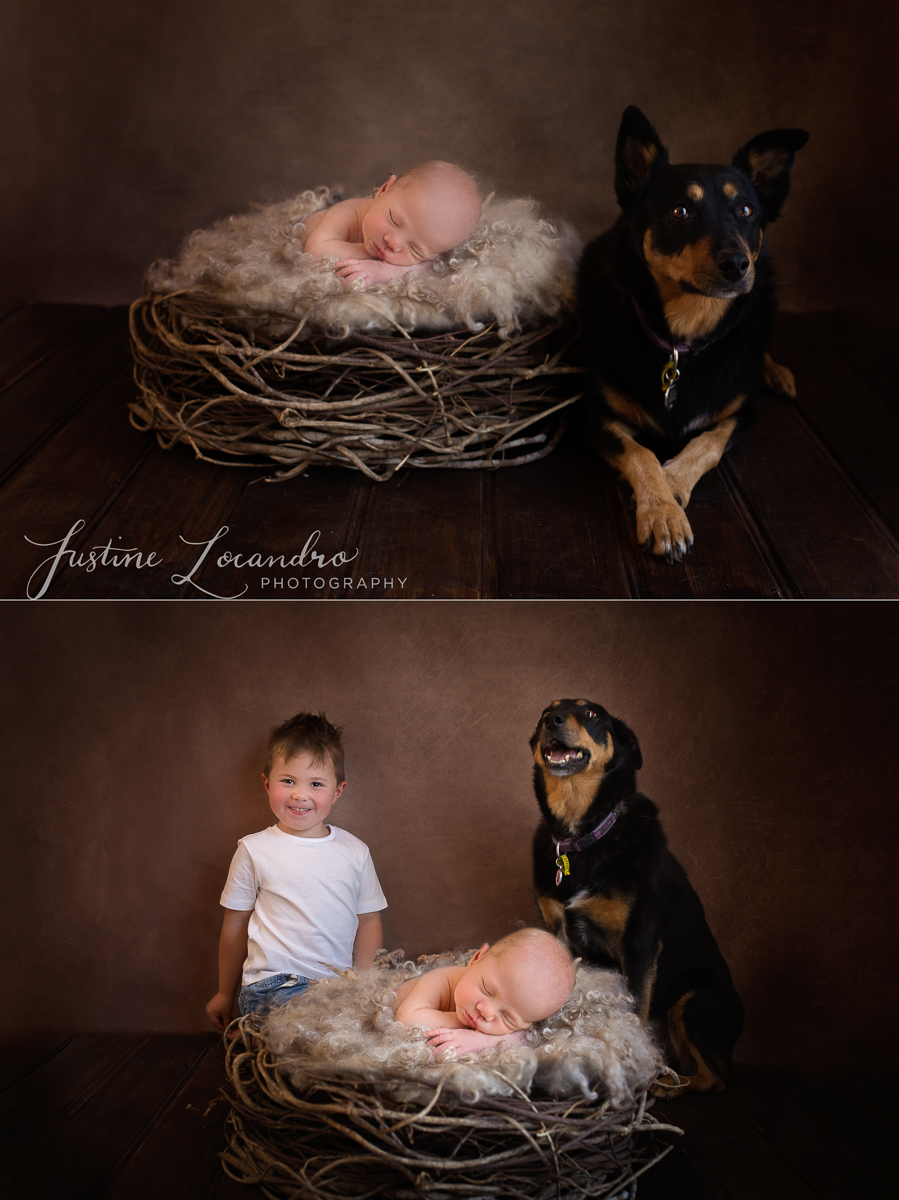 Customised newborn session