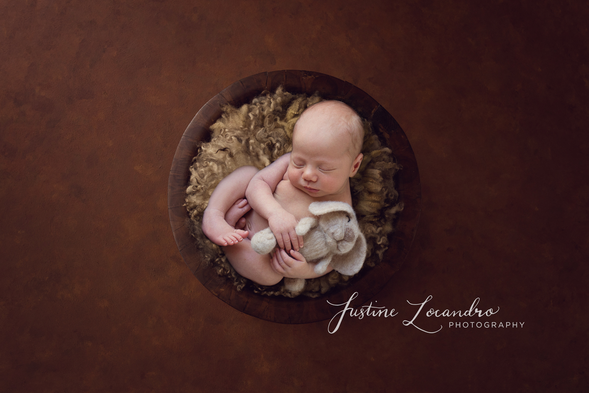 Ballarat newborn baby boy in brown with rabbit prop